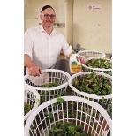 Kosher Crops Aims to Create the 'Cleanest, Freshest' Salad Greens