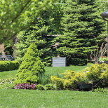 Five Steps to a Healthy Spring Lawn