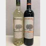 The Kosher Wines From La Mancha