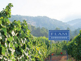 Flam Winery, a Family Affair