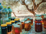 Israeli Students Win Award for Making Honey Without Bees