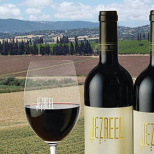 Israeli Researchers Are Working to Produce the World's First 'Super Wine'