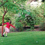 Turn Your Backyard Into a Safe Space for Healthy Play