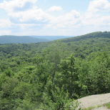 Ringwood's Norvin Green State Forest Offers Great Hiking
