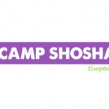 Camp Shoshanim Retires Girls Sleepaway Program