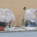 Life in a Bubble Is Warm and Relaxed at Lazy Bean Cafe