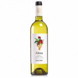 Aromatic Whites for Shavuot