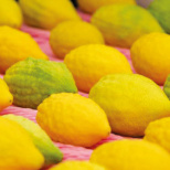 What to Do With an Etrog After Sukkot